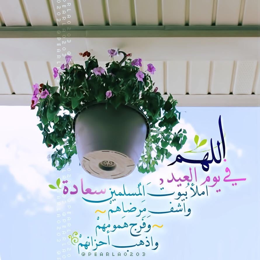 تهاني عيد الأضحي المبارك اللهم في يوم العيد املا بيوت المسليمن سعادة واشف مرضاهم واذهب احزانهم