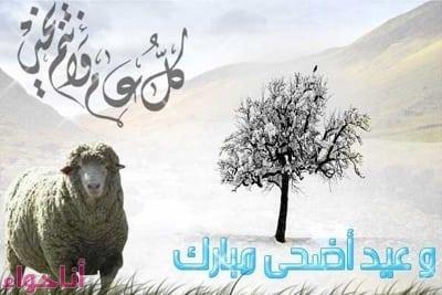 تهاني عيد الأضحي المبارك (74)-2