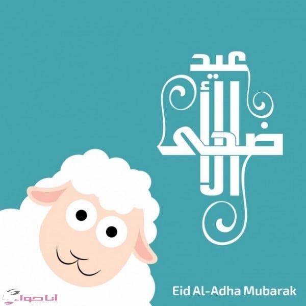 تهنئة عيد الأضحى eid al adha mubarak
