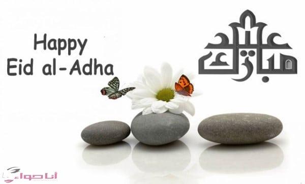 تهنئة عيد الأضحى عيد مبارك happy eid al adha