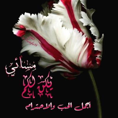 مساء الحب صور وعبارات جميلة مكتوب عليها مساء الخير حبيبتي مجلة انا حواء