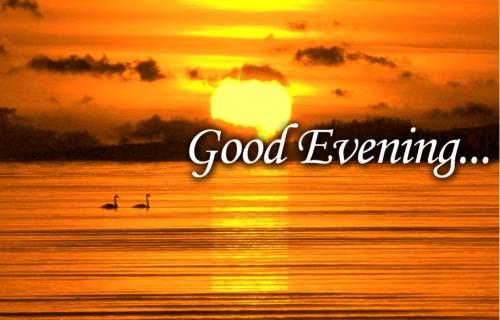 مساء الخير والياسمين