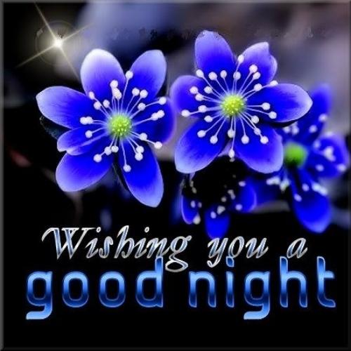 مساء الخيرات