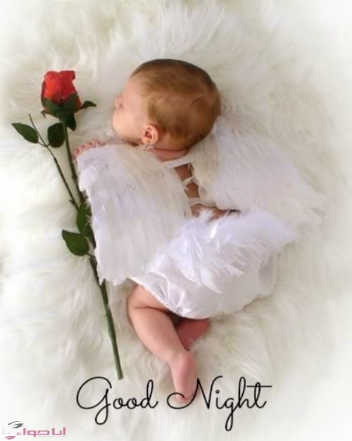 صور مساء الحب