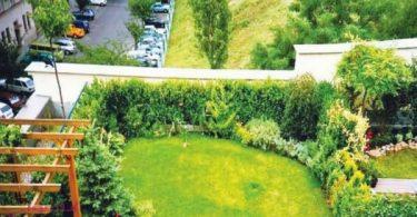 مشروع زراعة الاسطح