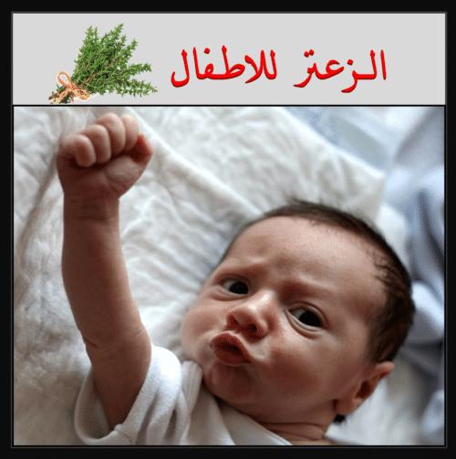 فوائد الزعتر للاطفال