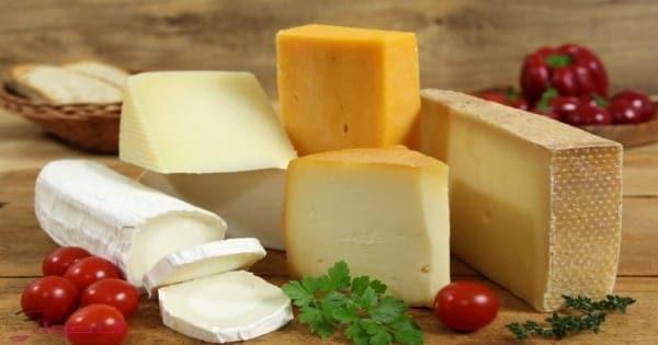 شاهدي انواع الجبن