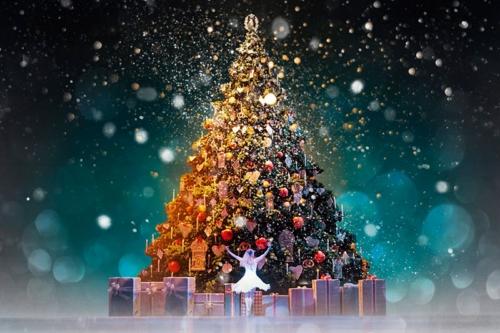 اجمل رسائل عيد الميلاد المجيد