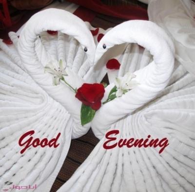 مساء الخير حبيبتي الغالية