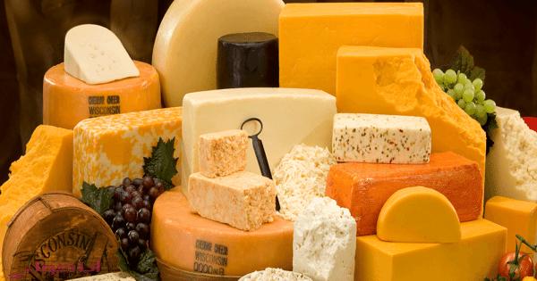انواع الجبن واسعارها